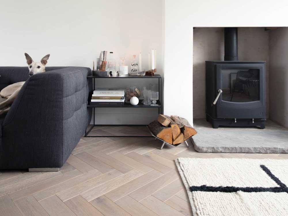 Farringdon Medium Eco Stove in fireplace and dog sat on sofa in modern room